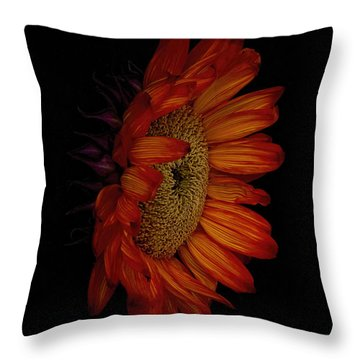 Big Red Throw Pillow by Dennis Reagan