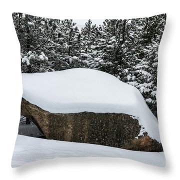 Big Rock - 0623 Throw Pillow