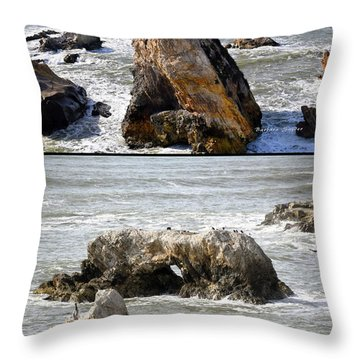 Throw Pillow featuring the photograph Big Rocks In Grey Water Duo by Barbara Snyder