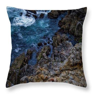 Big Sur #2 Throw Pillow
