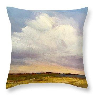 Big Sky Throw Pillow
