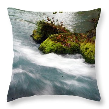 Big Spring Branch 2 Throw Pillow by Marty Koch