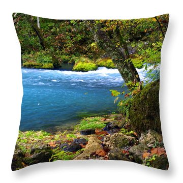 Big Spring Throw Pillow by Marty Koch