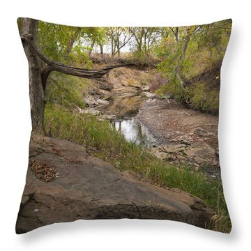 Big Stone Creek Throw Pillow