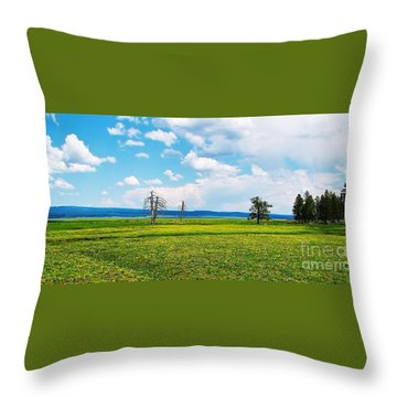Big Summit Prairie In Bloom Throw Pillow by Michele Penner