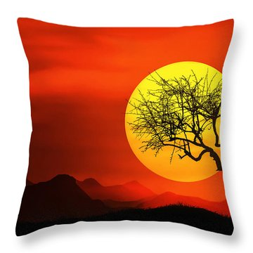 Big Sunset Throw Pillow by Bess Hamiti