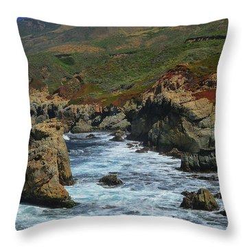 Big Sur 1 Throw Pillow