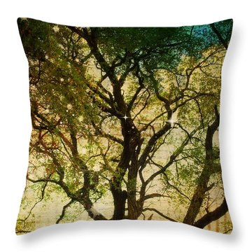 Big Tree In The Sunlight Throw Pillow