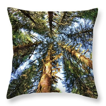 Big Trees In Olympic National Park Throw Pillow
