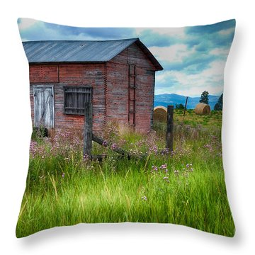 Bigfork Farm Shed Throw Pillow