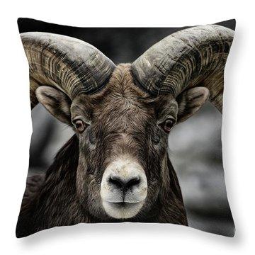 Bighorn Ram Throw Pillow