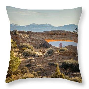 Bighorn Sheep And Mesa Arch Throw Pillow