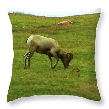 Throw Pillow featuring the digital art Bighorn Sheep Grazing by Chris Flees