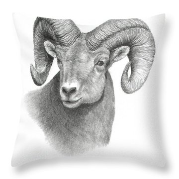 Bighorn Sheep Throw Pillow by Mary Rogers