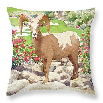 Bighorn Sheep On Golf Course Throw Pillow
