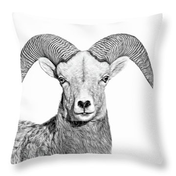Throw Pillow featuring the photograph Bighorn Sheep Ram Black And White by Jennie Marie Schell