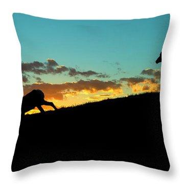 Bighorn Sunset Throw Pillow