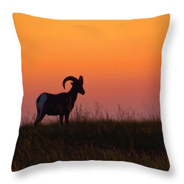 Bighorn Sunset Throw Pillow