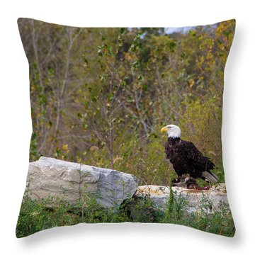 Bil-3 Throw Pillow