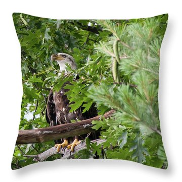 Bil-4 Throw Pillow