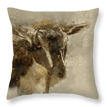 Billy Throw Pillow by Cyndy Doty