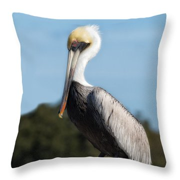 Biloxi Pelican Throw Pillow