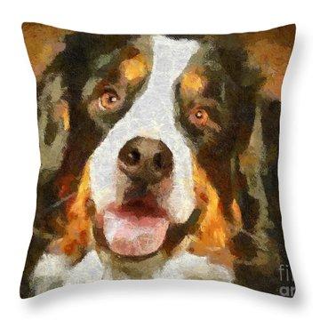 Bimbo - Bernese Mountain Dog Throw Pillow