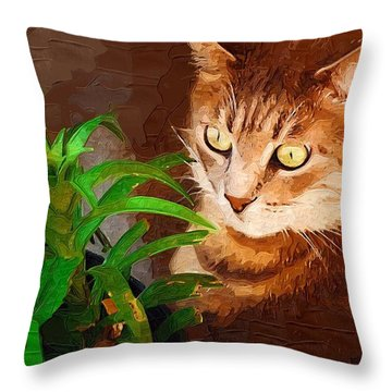 Throw Pillow featuring the photograph Bink by Donna Bentley