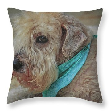 Binkley Throw Pillow
