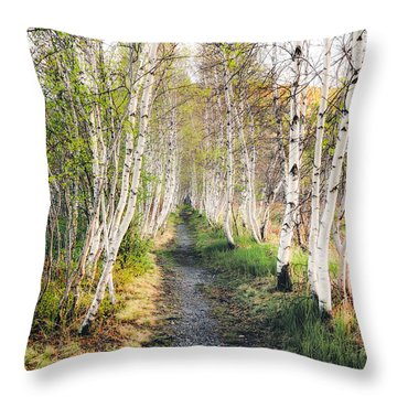Throw Pillow featuring the photograph Birch Alley II by Robert Clifford