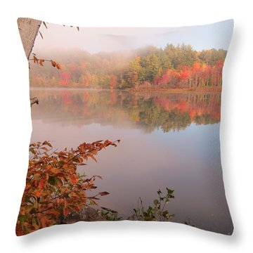 Birch And Beyond Throw Pillow by MTBobbins Photography