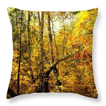 Birch Autumn Throw Pillow