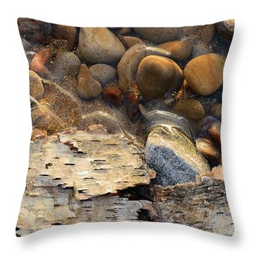 Birch Bark And Ice In The Creek Four  Throw Pillow