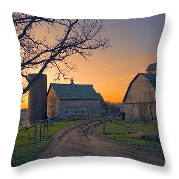 Birch Barn 2 Throw Pillow