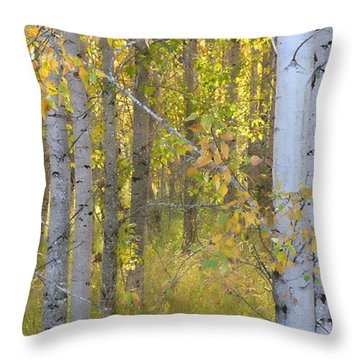 Birch Forest Throw Pillow by Bonnie Bruno