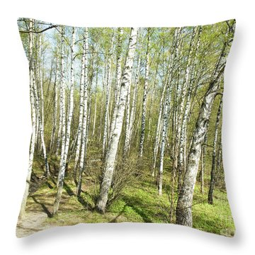 Birch Forest In Spring Throw Pillow