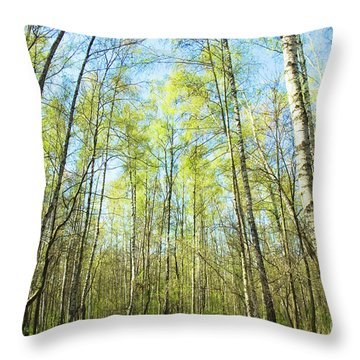 Birch Forest Spring Throw Pillow
