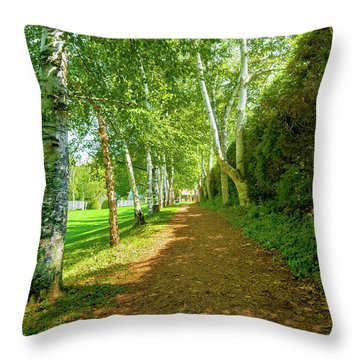 Throw Pillow featuring the photograph Birch Gauntlet by Greg Fortier