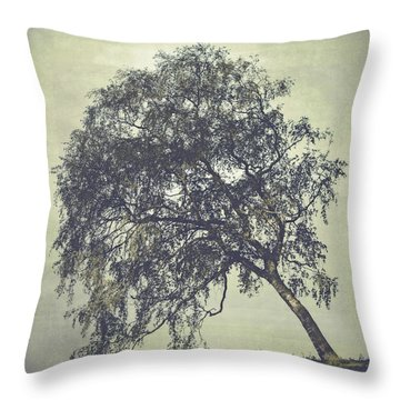 Throw Pillow featuring the photograph Birch In The Mist by Ari Salmela