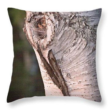 Birch Knot Sunset Throw Pillow