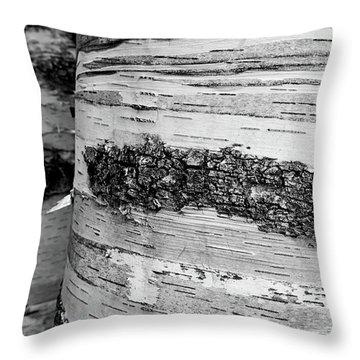 Birch Tree 1 Throw Pillow