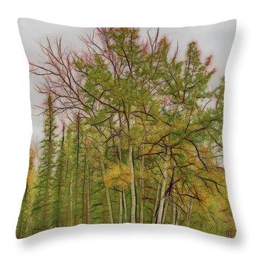 Birch Tree #1 Throw Pillow