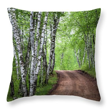 Throw Pillow featuring the photograph Birch Tree Forest Path #3 by Patti Deters