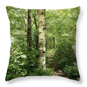 Birch Tree Hiking Trail Throw Pillow