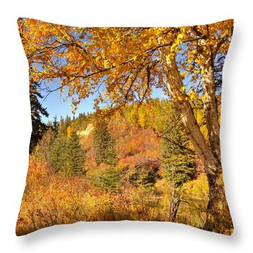 Throw Pillow featuring the photograph Birch Tree In Autumn by Jim Sauchyn