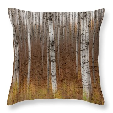 Birch Trees Abstract #2 Throw Pillow