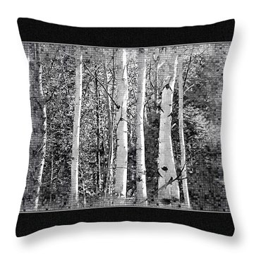 Throw Pillow featuring the photograph Birch Trees by Susan Kinney
