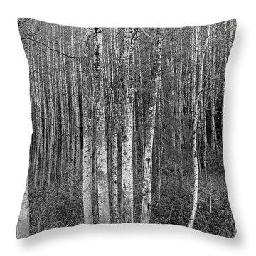 Birch Tress Throw Pillow