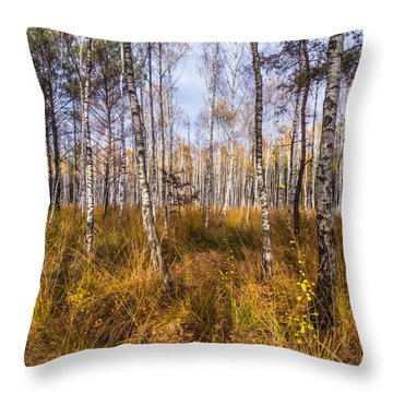 Birches And Grass Throw Pillow