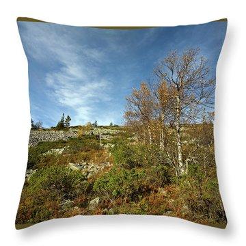 Birches In Noitatunturi Throw Pillow